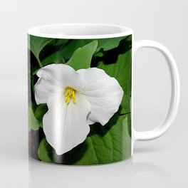 Trillium in the spotlight Coffee Mug