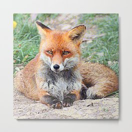 AnimalPaint_Fox_20171201_by_JAMColorsSpecial Metal Print