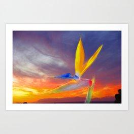 Sunset Flow Art Print