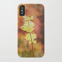 Seasonal Closeup - Autumn iPhone Case