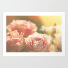 Bunch of pink Roses at backlight- Rose Flowers Art Print