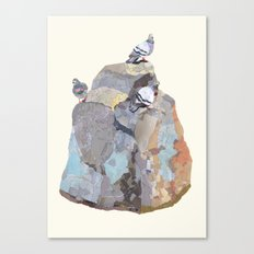 The Pigeon on a Rock Canvas Print