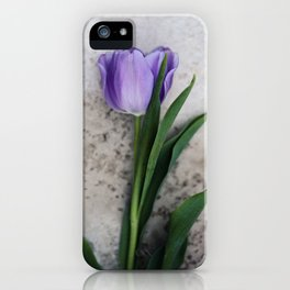 Blue Velvet 2/3 Collection iPhone Case