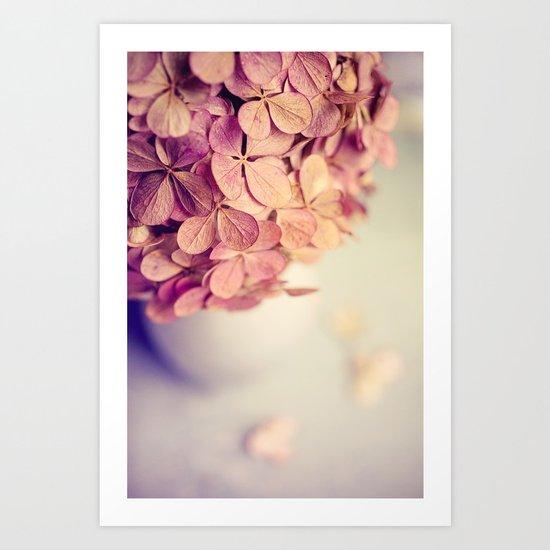Hydrangea paniculata Art Print