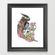 Birds with blossom Framed Art Print