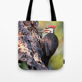 Pileated Woodpecker at Work Tote Bag