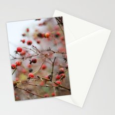 Winter Rosehips Stationery Cards