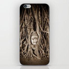 Buddha head in a Banyan Tree in Ayutthaya, Thailand iPhone Skin