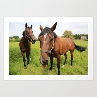 horses Art Prints featuring horses by Falko Follert Art-FF77