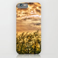 Approaching Slim Case iPhone 6s