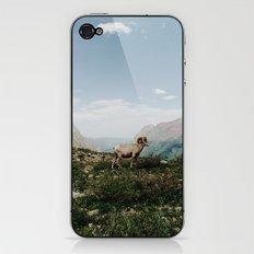 Bighorn Overlook iPhone & iPod Skin