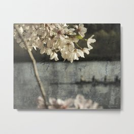 spring glide Metal Print
