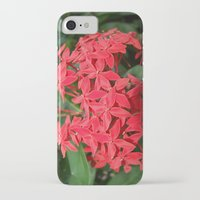 indonesia iPhone & iPod Cases featuring Flower (Bali, Indonesia) by Christian Haberäcker - acryl abstract