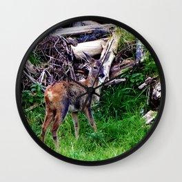 young deer builds a nest Wall Clock