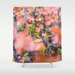 Colorful twigs Shower Curtain