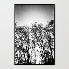woods... Canvas Print