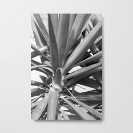 monochrome cactus 3 Metal Print