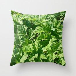 Green leaves of burdock Throw Pillow