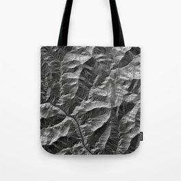 GrandCanyon Tote Bag
