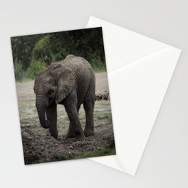Baby African Elephant 2 Stationery Cards