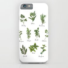 HERBS on white Slim Case iPhone 6s