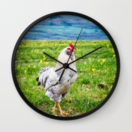 Close-up of one white rooster animal in french flowered meadow in summer Wall Clock