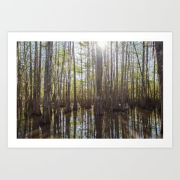 The Bayou Art Print
