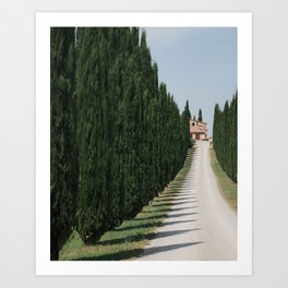 Tuscany in detail Art Print