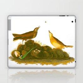 Brown Lark Bird Laptop & iPad Skin