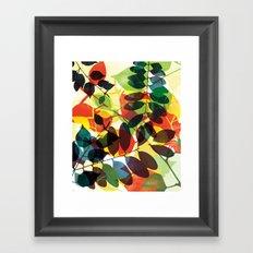 Camino Framed Art Print