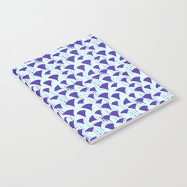 Carpe Diem Triangles Notebook