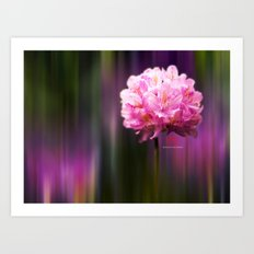 Flora Dreams  Art Print