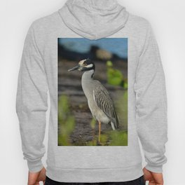 Yellow Crown Night Heron Hoody