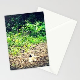 Lost Puppy Dog Stationery Cards