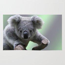 Koala Bear Rug