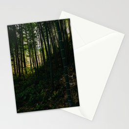 Kiso Valley Shadows Stationery Cards