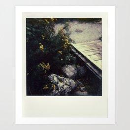 North Cascades National Park - Polaroid Art Print