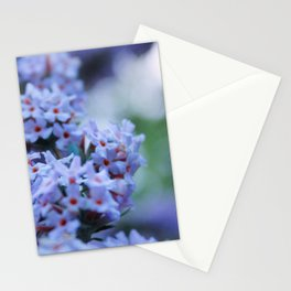 Nunca te olvidaré Stationery Cards