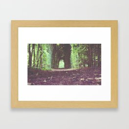 Green Passage Framed Art Print