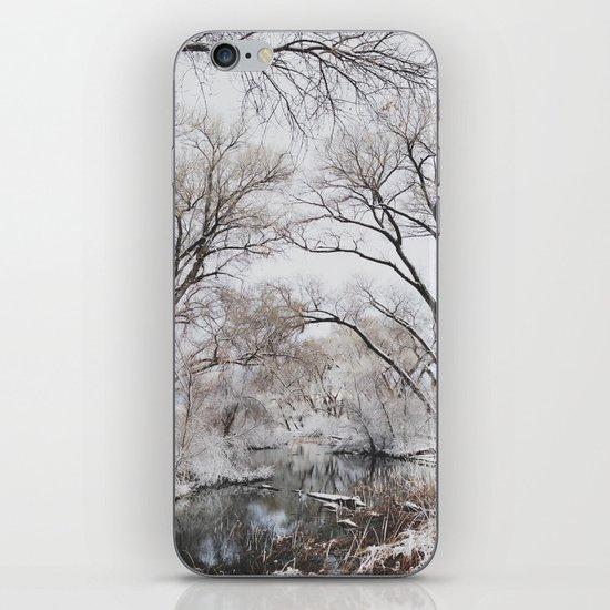 Winter Creek Canopy iPhone & iPod Skin