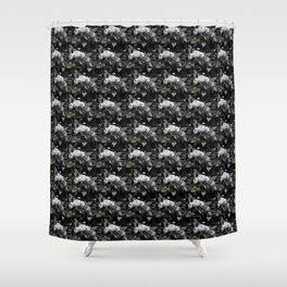 Roses II-A Shower Curtain