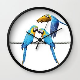 macaw Bird sitting on rope & flying Wall Clock