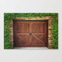 Door and Ivy Backdrop Canvas Print