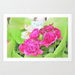 Floral Notes Art Print