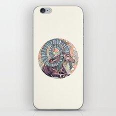 Nubian Ibex iPhone & iPod Skin