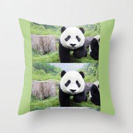 Panda Life Throw Pillow