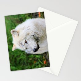 Looking Left Stationery Cards