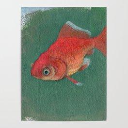 Goldfish #3 Poster