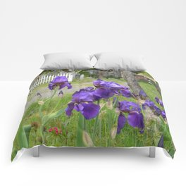 Purdy in Purple... Comforters