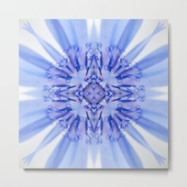 blue sailor Metal Print